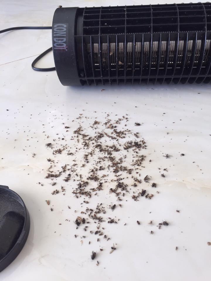 Đèn bắt muỗi con dơi model cn 02- bắt được muỗi cả ban ngày và ban đêm